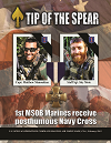 Tip of the Spear Cover